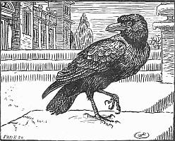 Raven_1899