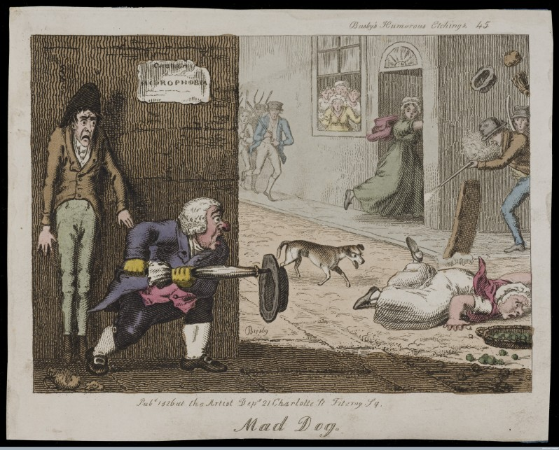 Wellcome Library, London. A mad dog on the run in a London street: citizens attack it as it approaches a woman who has fallen over. Coloured etching by T.L. Busby, 1826.